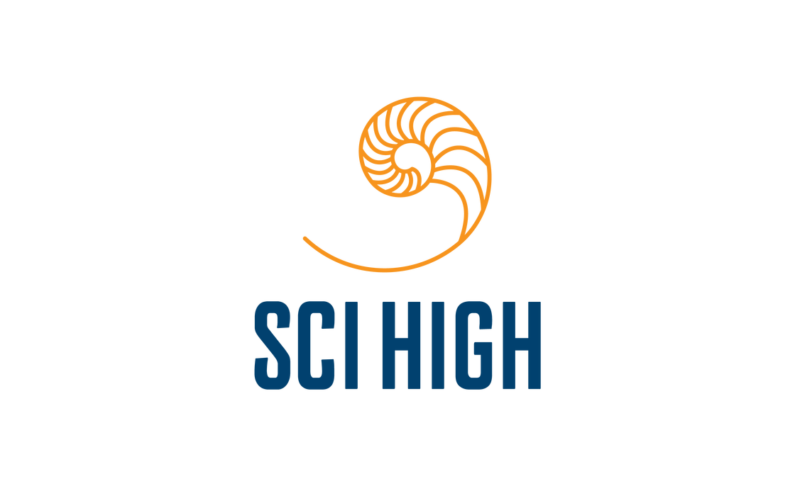 Sci High Logo On Light